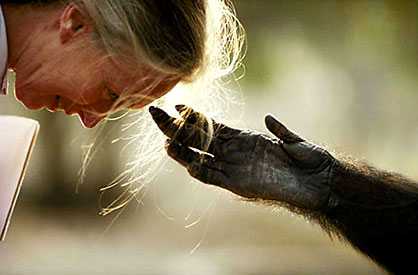 Jane Goodall and Jou Jou